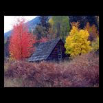 Autumn Cabin by Indelibly-Yours