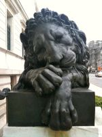 Corcoran Lion 3 by 44NATHAN