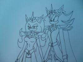 King shadow and Queen Sira by sira-the-hedgehog