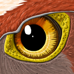 Flix Eye Closeup by Azvolrien