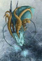 Wild Water Dragon by Conwant
