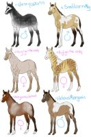 foals from recent breedings by sandy444