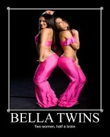 Bella Twins Poster by blunose2772