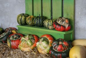 awesome pumpkins 2 by ingeline-art