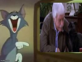 Tom Laughs At Salem Slapping An Old Guy by CartoonAnimes4Ever