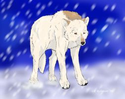 In the winter-Gebo by TheForgottenWolf