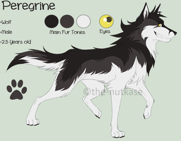 Peregrine Ref by The-Nutkase