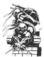 Leo and Raph by EryckWebbGraphics