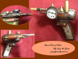 Steam Powered Pistol by Jerry-N-Kjersti
