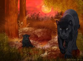 Black Jaguar 'Rare Sighting' by JaneEden
