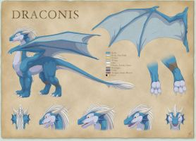 Draconis Reference Sheet by thazumi