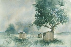 Beehives by mwolski