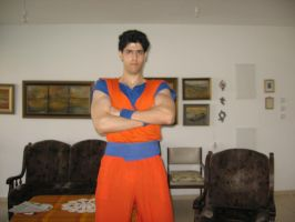 Adult Gohan Outfit by yair23