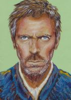 Hugh Laurie by alexandra-mainea