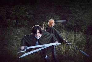 Shingeki no Kyojin: Dangerous mind by GeshaPetrovich