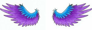 tattoo - wings by phoenix-feather