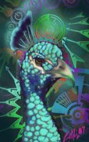 Technicolour Peacock by chostopher