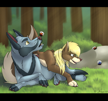 A Morning In The Forest by Arceus55