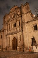 Cathedral Mexico City by JoshTox