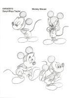 Disney Portfolio Mickey Mouse 1 by DarylT