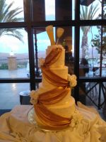 the cake by vienna2000