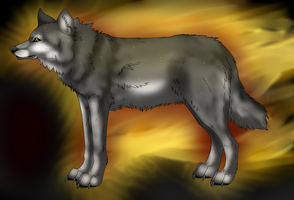Random realistic wolf by KyuubiCore
