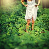 almost Alice by theluckynine