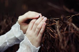 the secret garden. by laura-makabresku