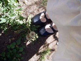 dandelions and shoes by thiselectricheart