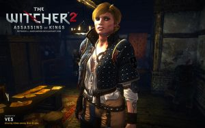 Witcher 2. Ves by JakeCarver