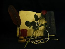 Book and rose 4 by smaragdistock