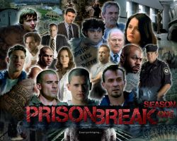 Prison Break Season One by hoopsfan