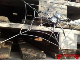 Spider on web by Madhouse-Customs