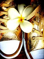 Golden Converse Orchid by sHuNgUlLoOvE