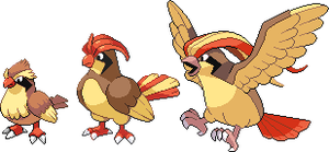 Pidgey, Pidgeotto and Pidgeot hi-res sprites by Hooded-Bird