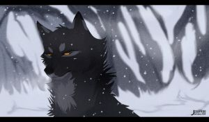 winter by STAFREE