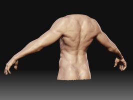 Human body back view by bullygamer17