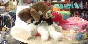 Thrift Store Bearstack by CanzetYote