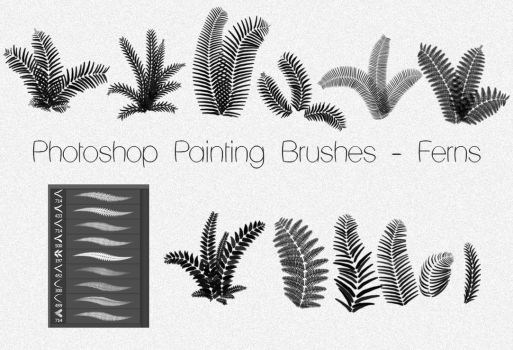Photoshop Painting Brushes - FERNS by dann94