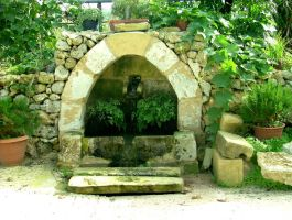 Small Gozitan water spring by Faunamelitensis