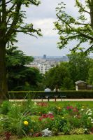 Flowers with view on Paris by Heurchon