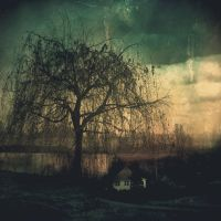 Willow Dreams by Anj3lla