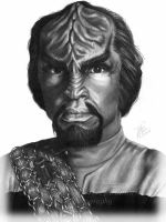 UPDATE: Star Trek's Worf by Elvandia