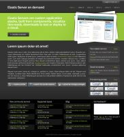 Web for some server-company by pksn