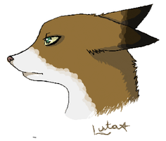 iScribble fox by infinitize
