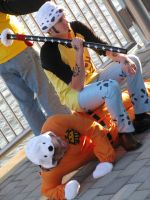 Trafalgar Law Cosplay (One Piece) by Trafalgar1412