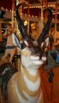 Great Plains Carousel 71 by Falln-Stock