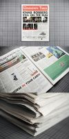 'The Lowdown Times' Newspaper by ThePopeGFX