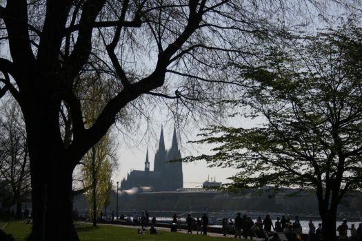 cologne by xwannabex