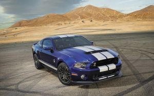 2014 Ford Shelby GT500 by ThexRealxBanks